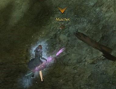 107_Muschel_Screen_2