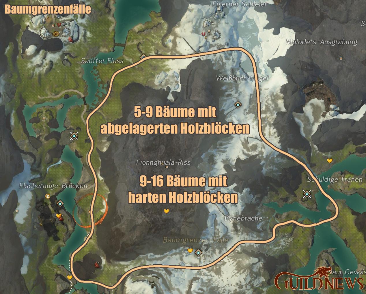 HolzHartBaumgrenzen