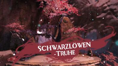 Photo of Video: Aouglas öffnet 25 Schwarzlöwen-Truhen (Kriegsgeschundene Truhe)