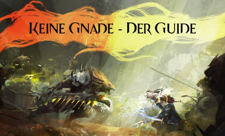 Photo of Keine Gnade – Der große Guide