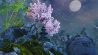 Bild von News: Sunqua Peak – Trailer veröffentlicht & Release bekannt