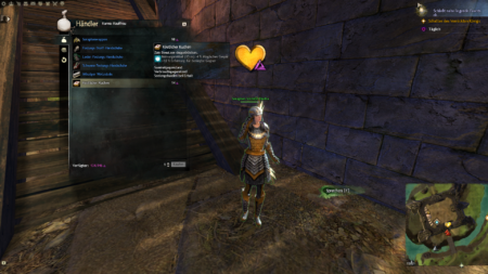 Guild Wars 2 Tutorial3