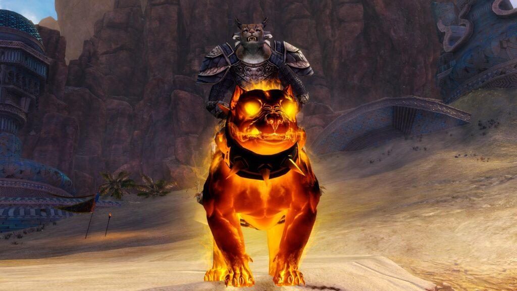 Hund des Baltasar vorne